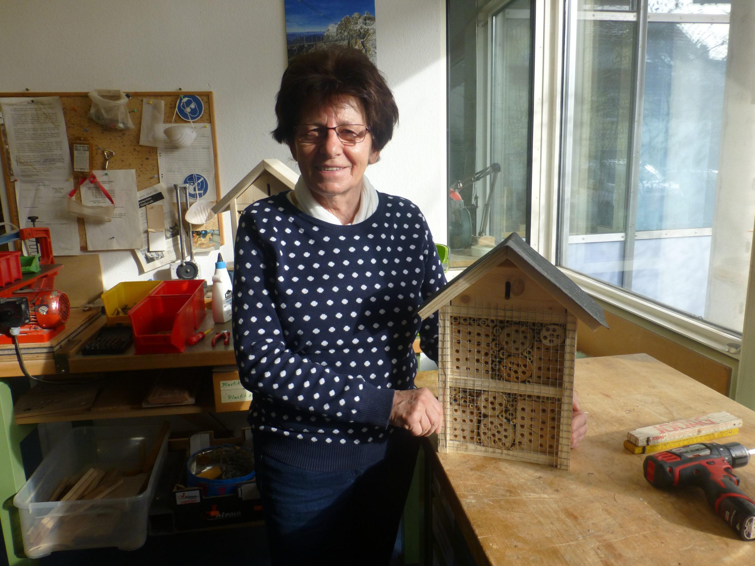 Erste Insektenhotels wurden gebaut
